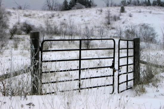 gated 7.365