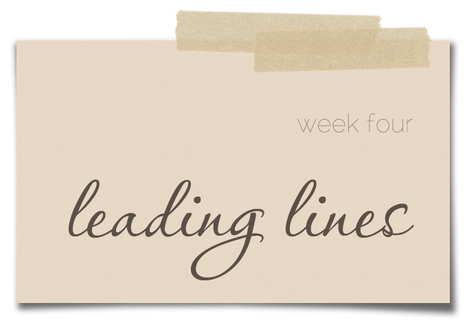 weekFOUR-LeadingLines