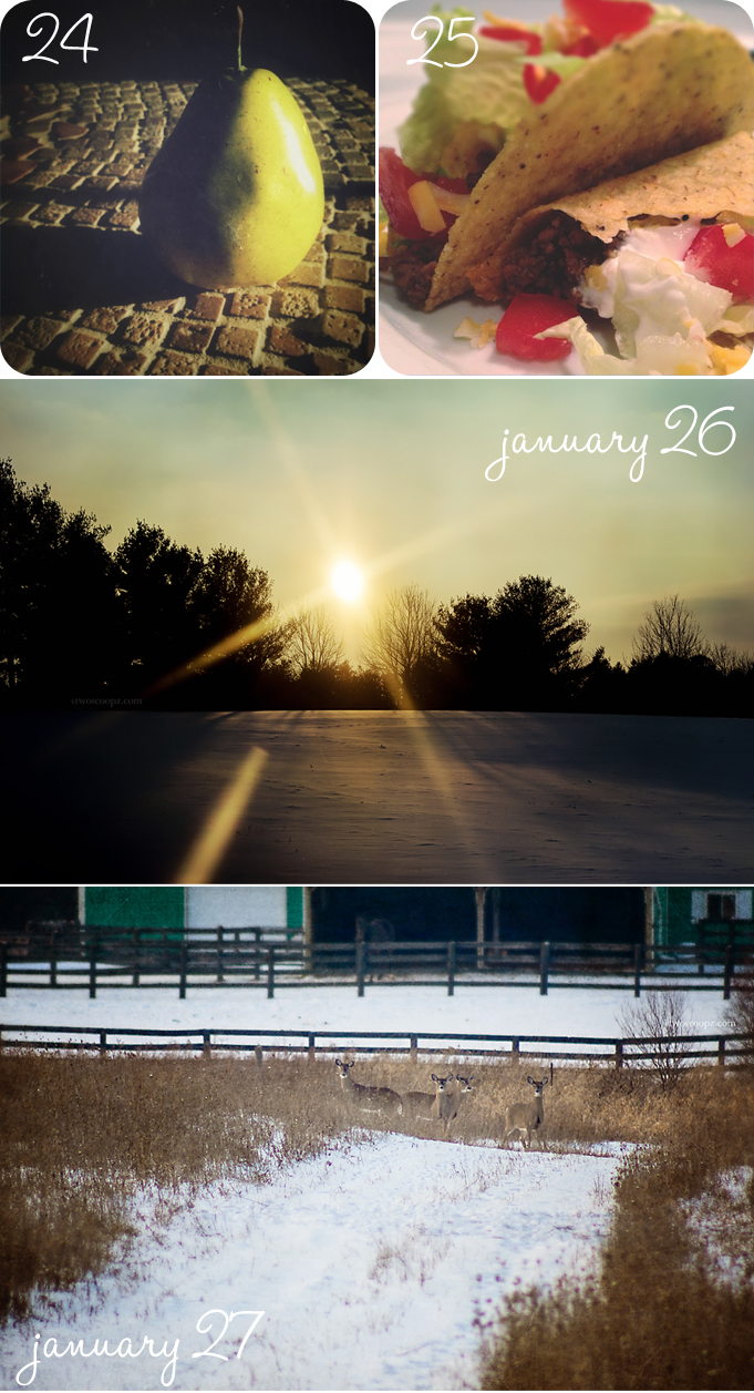 jan24-27photos