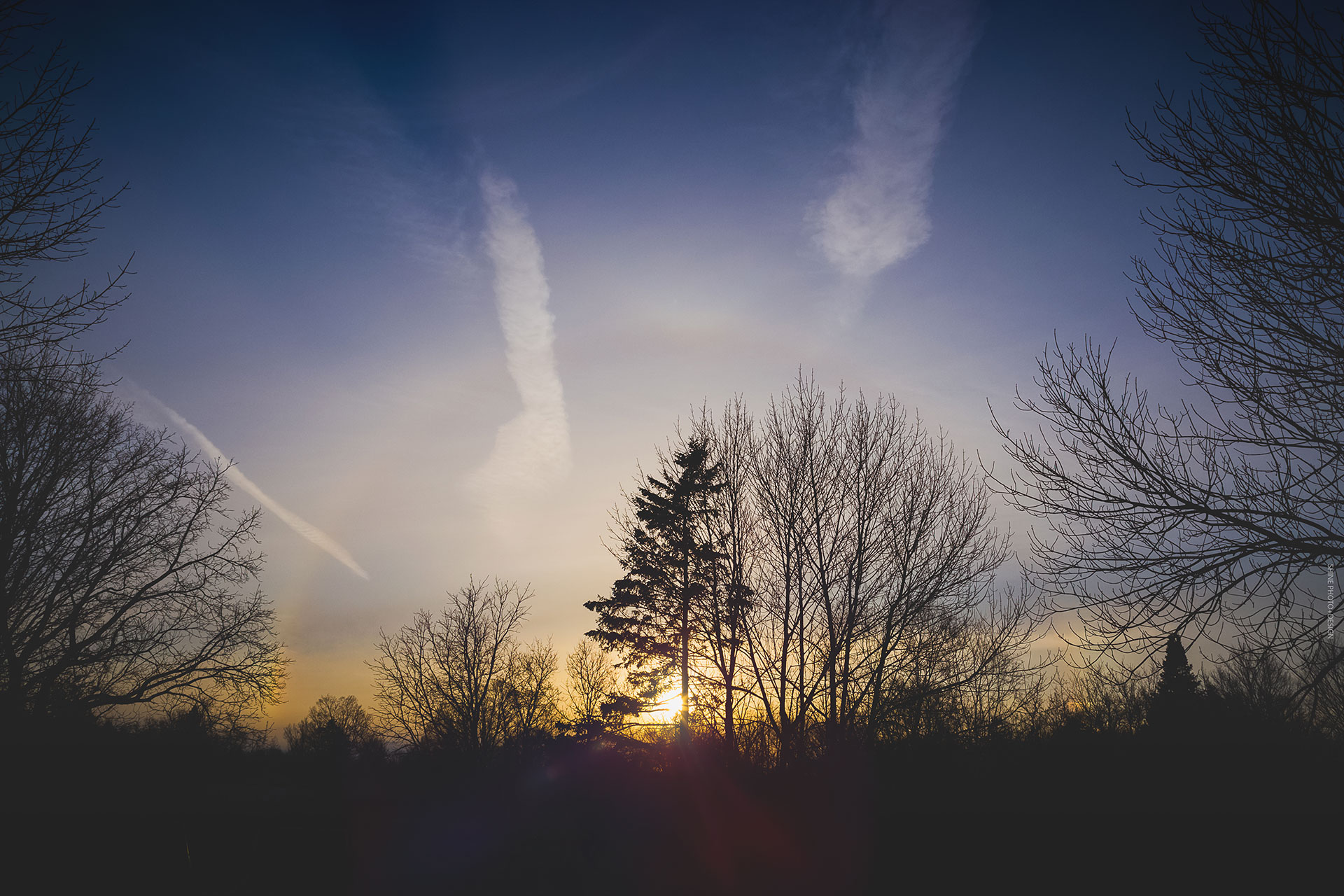 Sundog by SHINE Photo+Design