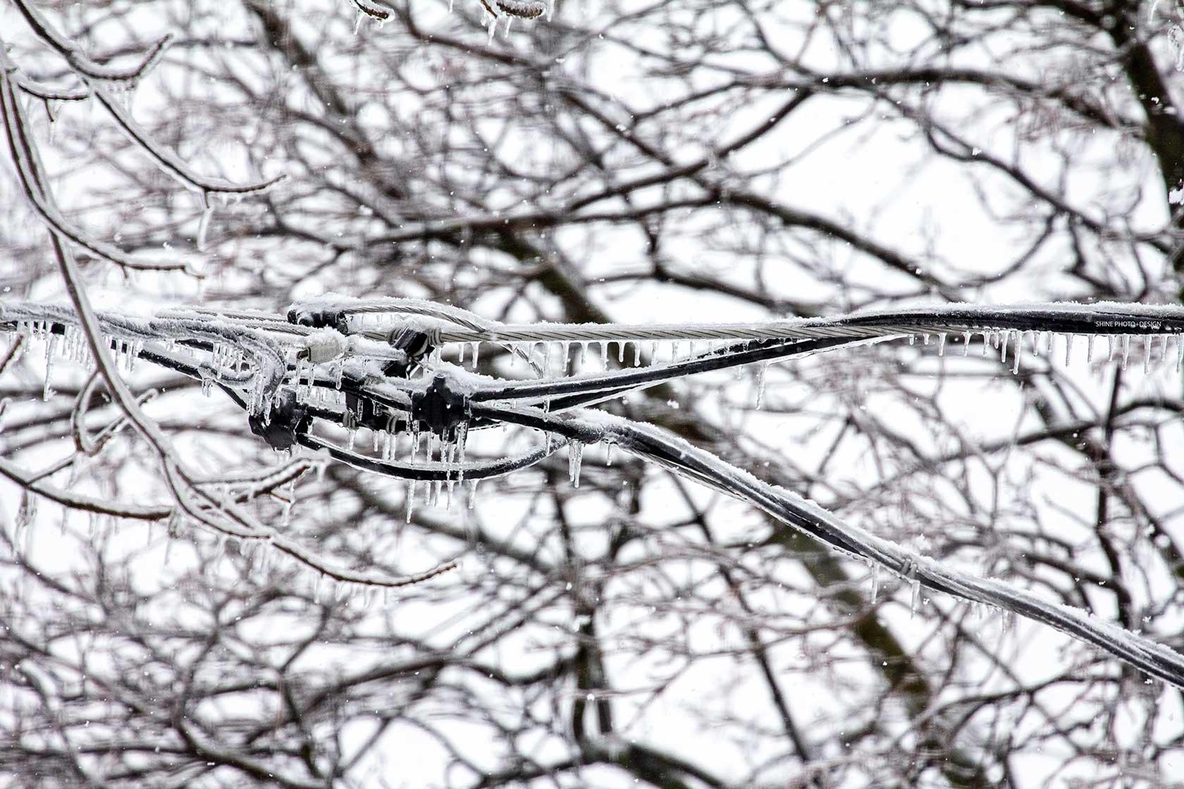 frozen by SHINE Photo+Design