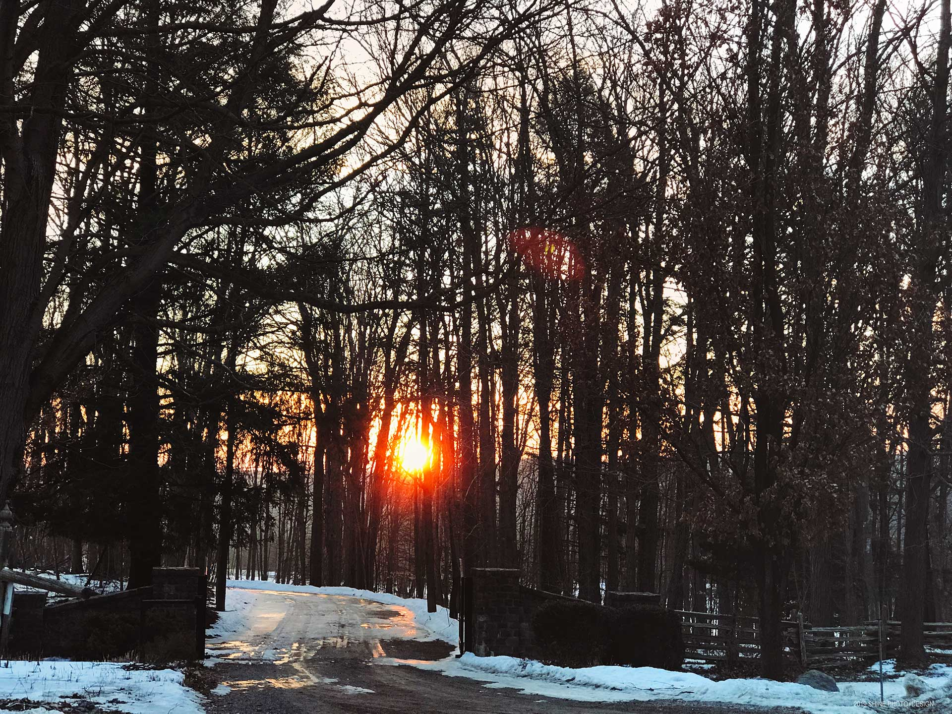 sunshine on snow by Shine Photo Design